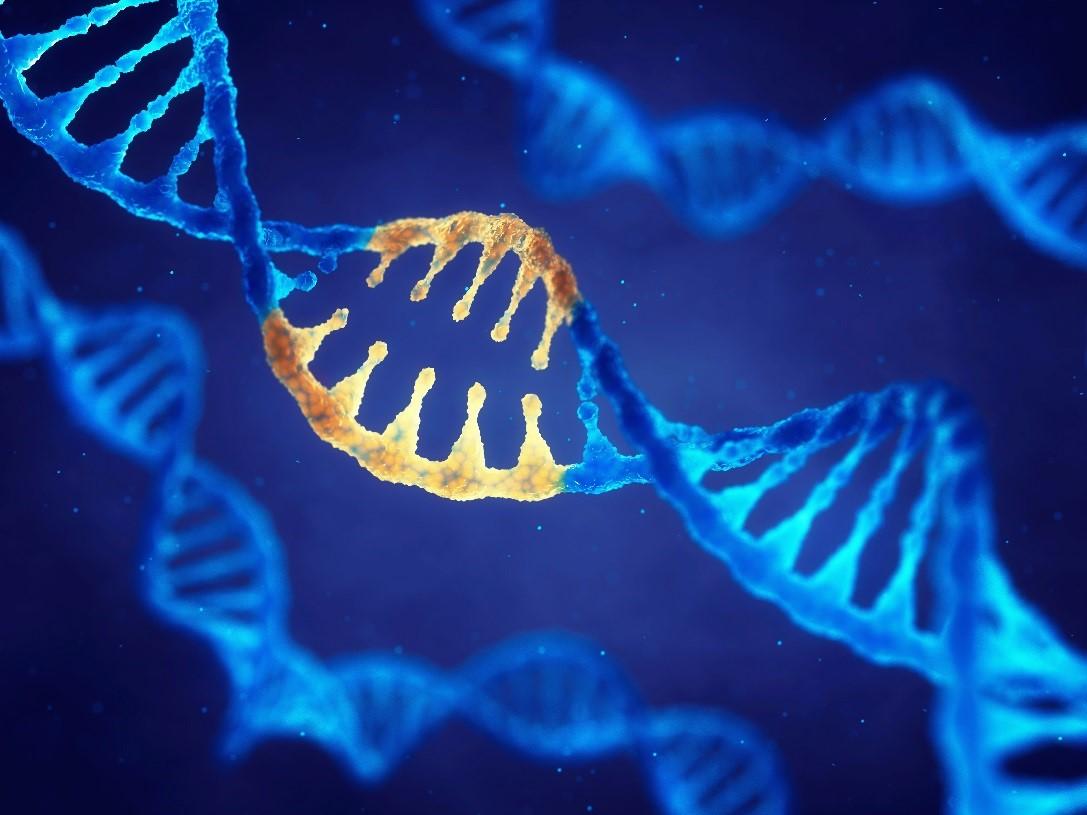 crispr-research-biotech-investors-gene-editing